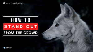 How To Stand Out From The Crowd cover